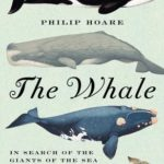 [PDF] [EPUB] The Whale: In Search of the Giants of the Sea Download