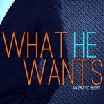 [PDF] [EPUB] What He Wants (Second Chances, #1.5) Download