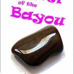 [PDF] [EPUB] Jewel of the Bayou (Miss Fortune) Download