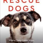 [PDF] [EPUB] Rescue Dogs: Where They Come From, Why They Act the Way They Do, and How to Love Them Well Download