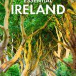 [PDF] [EPUB] Fodor's Essential Ireland 2020 (Full-color Travel Guide) Download