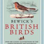[PDF] [EPUB] Bewick's British Birds. Thomas Bewick Download