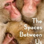 [PDF] [EPUB] The Spaces Between Us: A Story of Neuroscience, Evolution, and Human Nature Download