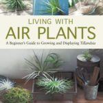 [PDF] [EPUB] Living with Air Plants: A Beginner's Guide to Growing and Displaying Tillandsia Download