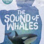 [PDF] [EPUB] The Sound of Whales Download