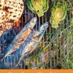 [PDF] [EPUB] Outdoor Cooking: River Cottage Handbook No.17 Download