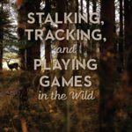 [PDF] [EPUB] Stalking, Tracking, and Playing Games in the Wild: Secrets of the Forest Download