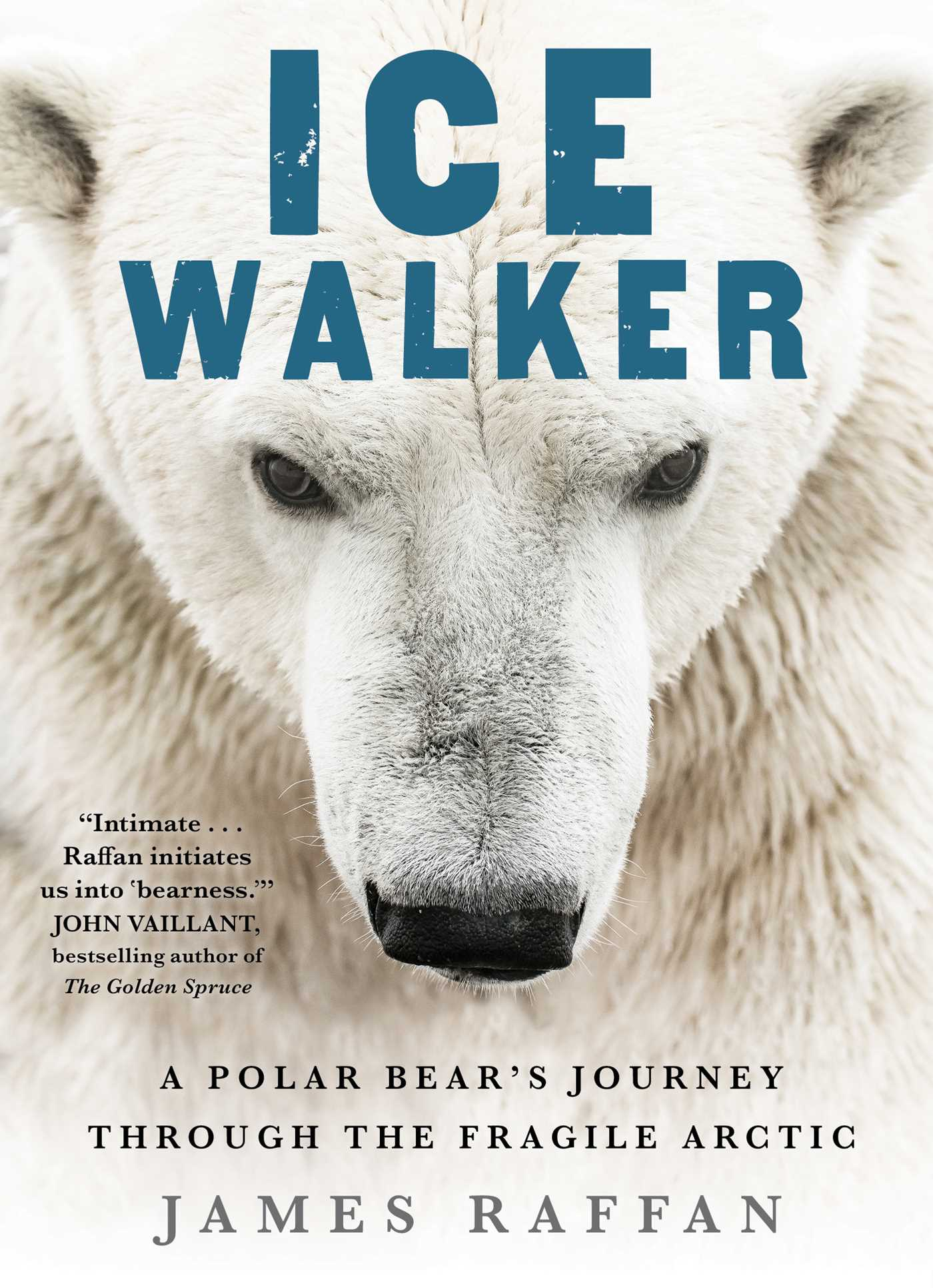 [PDF] [EPUB] Ice Walker: A Polar Bear's Journey through the Fragile Arctic Download by James Raffan