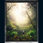 [PDF] [EPUB] Naturaleza salvaje (Aaron Falk, #2) Download
