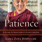 [PDF] [EPUB] Patience Download