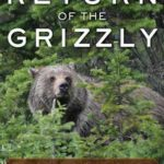 [PDF] [EPUB] Return of the Grizzly: Sharing the Range with Yellowstone's Top Predator Download