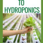 [PDF] [EPUB] Guide to Hydroponics Download