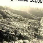 [PDF] [EPUB] Jimmy James Blood Download