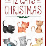 [PDF] [EPUB] The 12 Cats of Christmas (The Kitten Files) Download