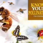 [PDF] [EPUB] Know Your Bees and Other Pollinators Download