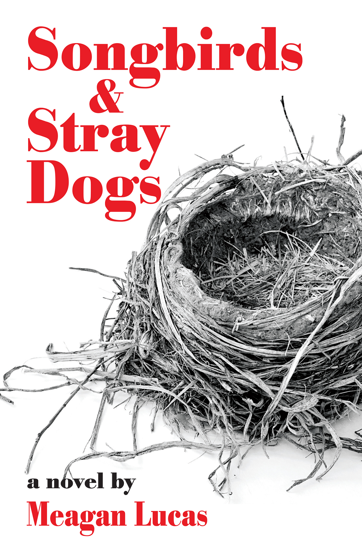 [PDF] [EPUB] Songbirds and Stray Dogs Download by Meagan Lucas